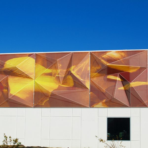 Customized Versus Modular: Which Type of Tensile Fabric Facade Is Right